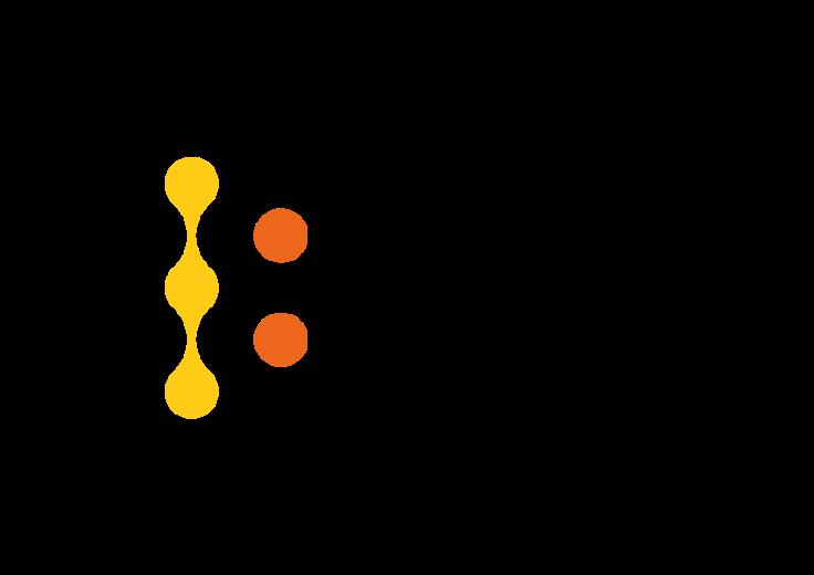 bs-it-logo-15102015
